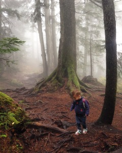 Hiking Mount Seymour